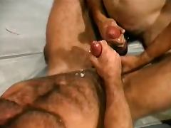 Muscle Bear Wrestling tube porn video