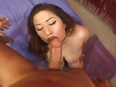 Chubby latina takes big dick tube porn video