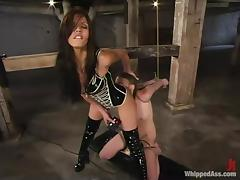 Shy Love is going to enjoy the pain that Deja Daire gives tube porn video