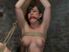 Gorgeous Jennifer White gets toyed in hot bondage video tube porn video