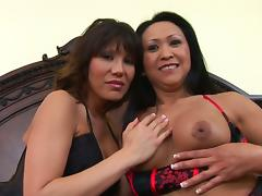 Ava Devine And Kitty Landgon In A Hardcore Interracial Doggystyle Threesome tube porn video